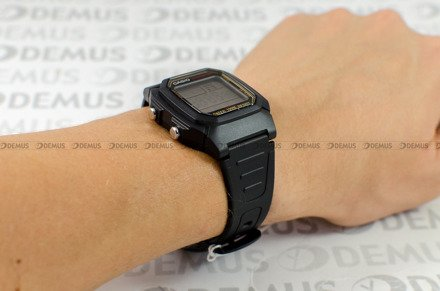 Zegarek Casio W 800HG 9AVEF