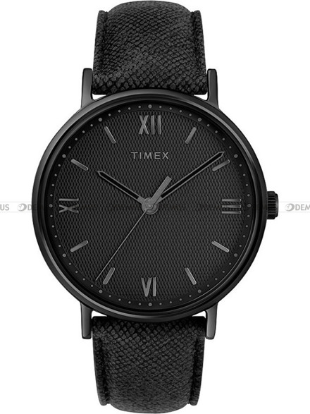 Zegarek Męski Timex Southview TW2T34900
